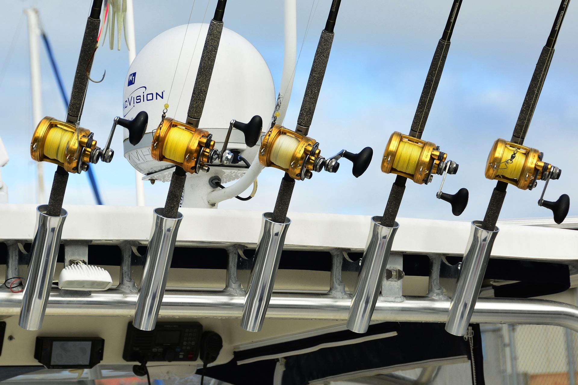 Guia de Compra Carretes De Pesca